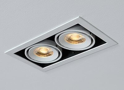 DL3013 Double LED Downlight 20w
